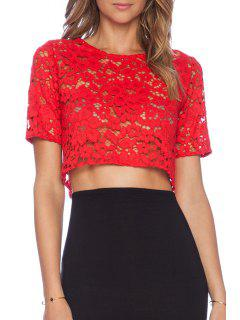Jewel Neck Red Lace Short Sleeve Crop Top - Red L