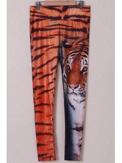 Animal Print Leggings - Tiger Print