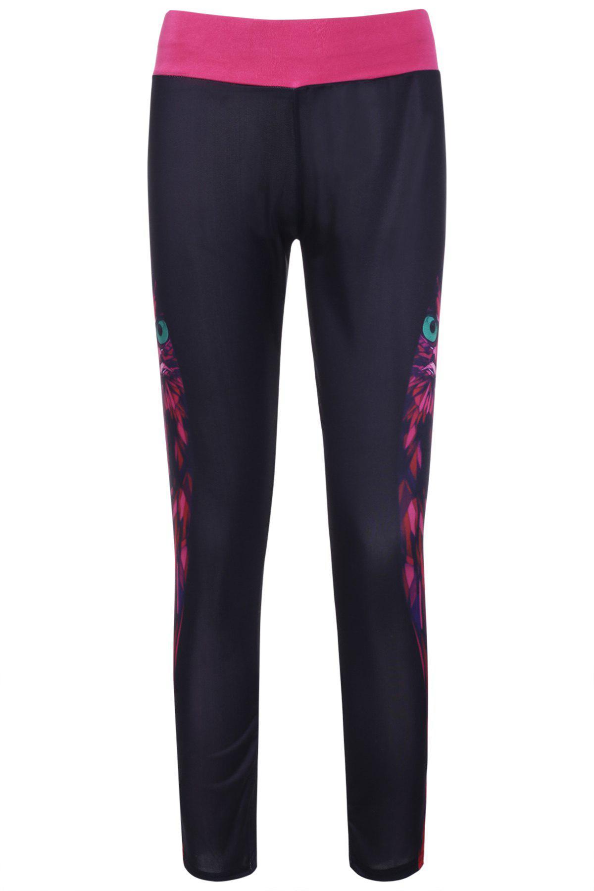 Owl Print Yoga Pants