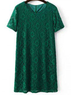 Short Sleeve Lace Shift Dress - Green S