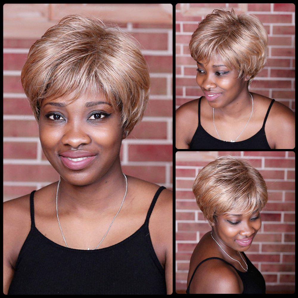 Short Double Color Fluffy Neat Bang Straight Synthetic Wig 202047601