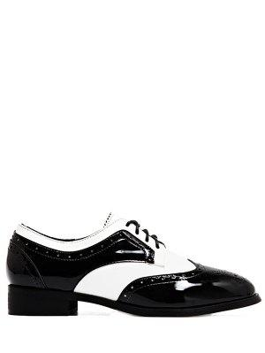 Lace Up Two Tone Wingtip Flat Shoes