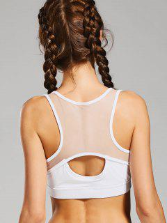 Cut Out Mesh Panel Padded Sports Bra - White M