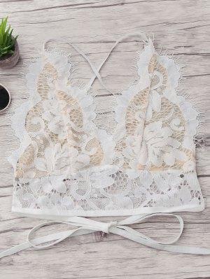 Crisscross Scalloped Lace Bralette - White - White S