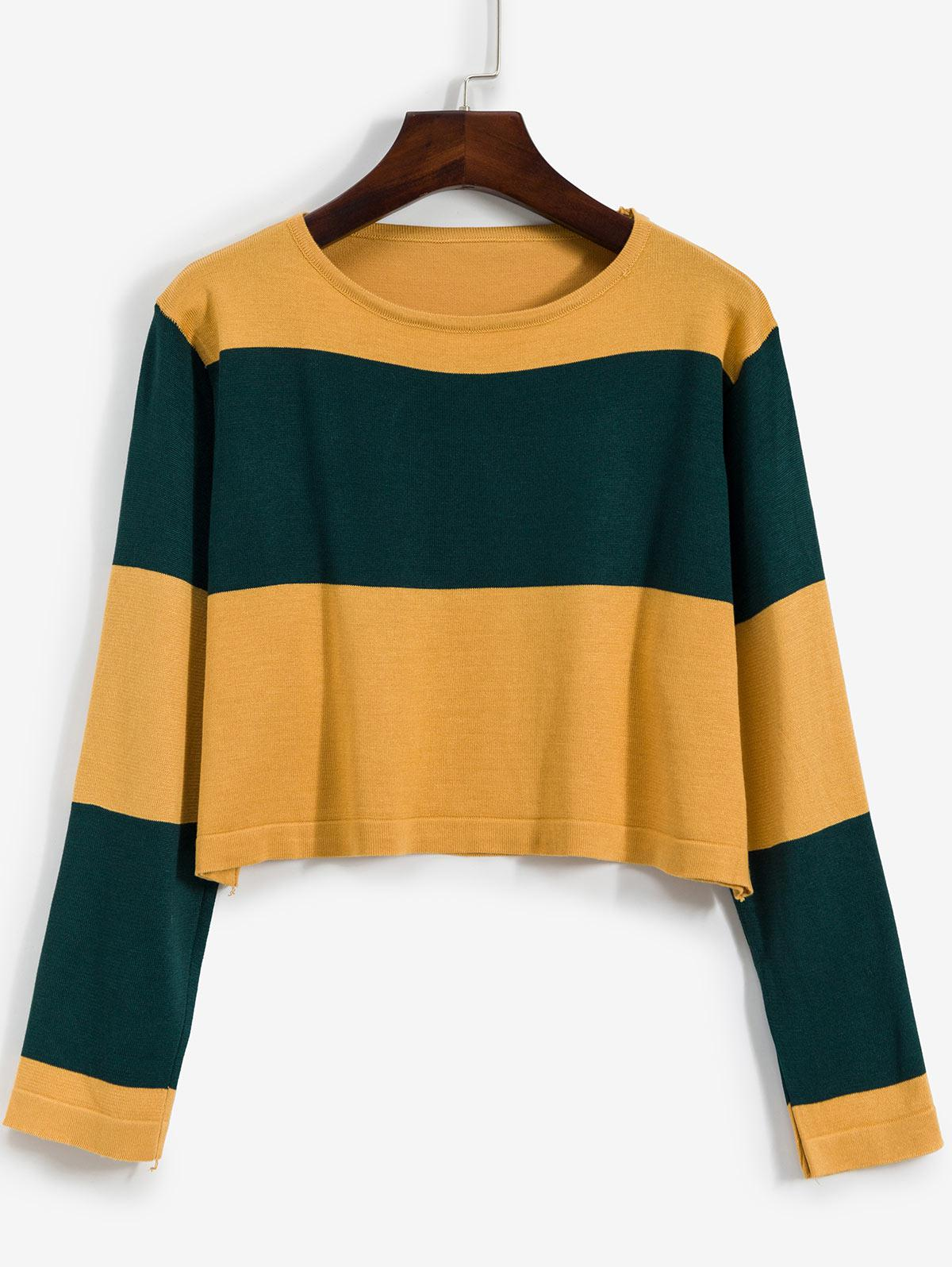 Pullover Colorblock Crew Neck Cropped Sweater