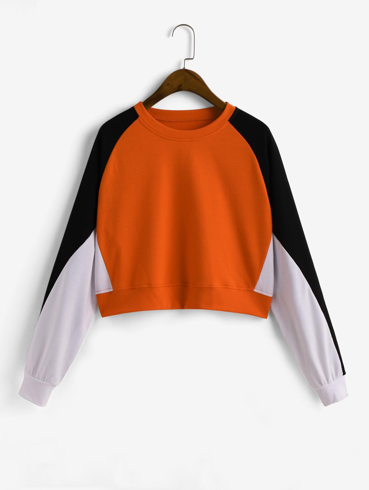 Pullover Colorblock Raglan Sleeve Sweatshirt
