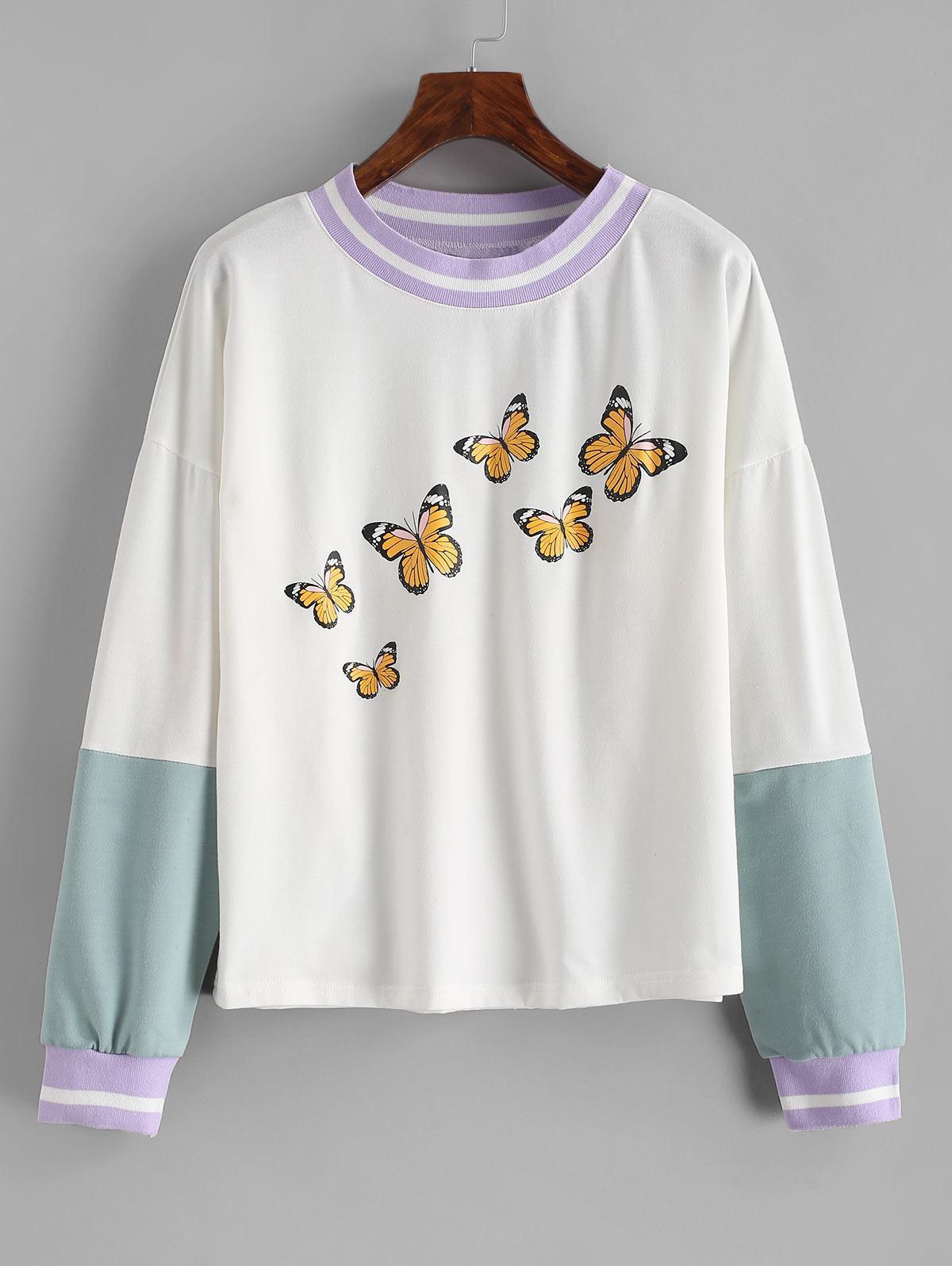 Drop Shoulder Butterfly Print Colorblock Sweatshirt