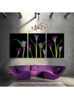 Yc Special Design Frameless Paintings Callas Of 3 - Black And Green 24 X 16 Inch (60cm X 40cm)